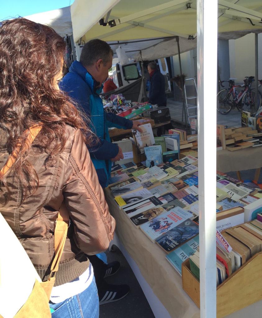 Abre un libro en Torremanzanas